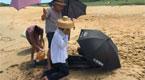 海豚海边搁浅 海南村民撑伞浇水实施救助