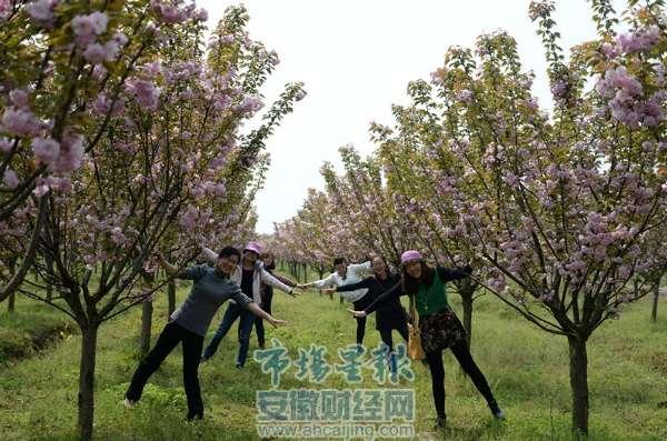 生活 乐活  此次举办官亭镇森林花卉旅游节活动,将全面推出官亭生态园