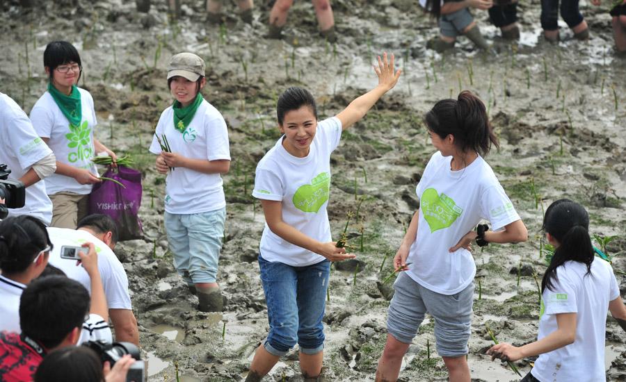 在泥中开心地玩成一团