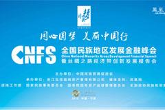 全国民族地区发展金融峰会