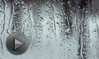 长夏养生:如何排除多余湿气?