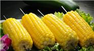 黄灿灿的玉米 好看好吃又好营养