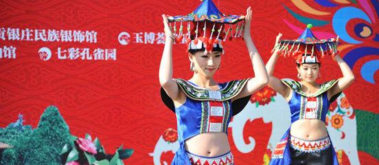 首届中国云南(石林)国际汽车露营大会