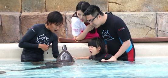 当Angela遇上小海豚 两个都是萌萌哒
