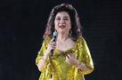 2012金光灿烂徐小凤北京演唱会