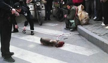 流浪汉看着自己的狗被警察打死
