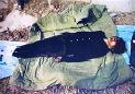 雅阁后备箱里的男尸