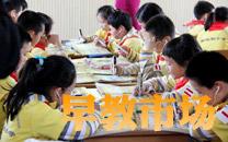2013中国早教培训领域市场分析
