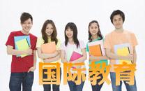 2013中国国际教育领域市场分析