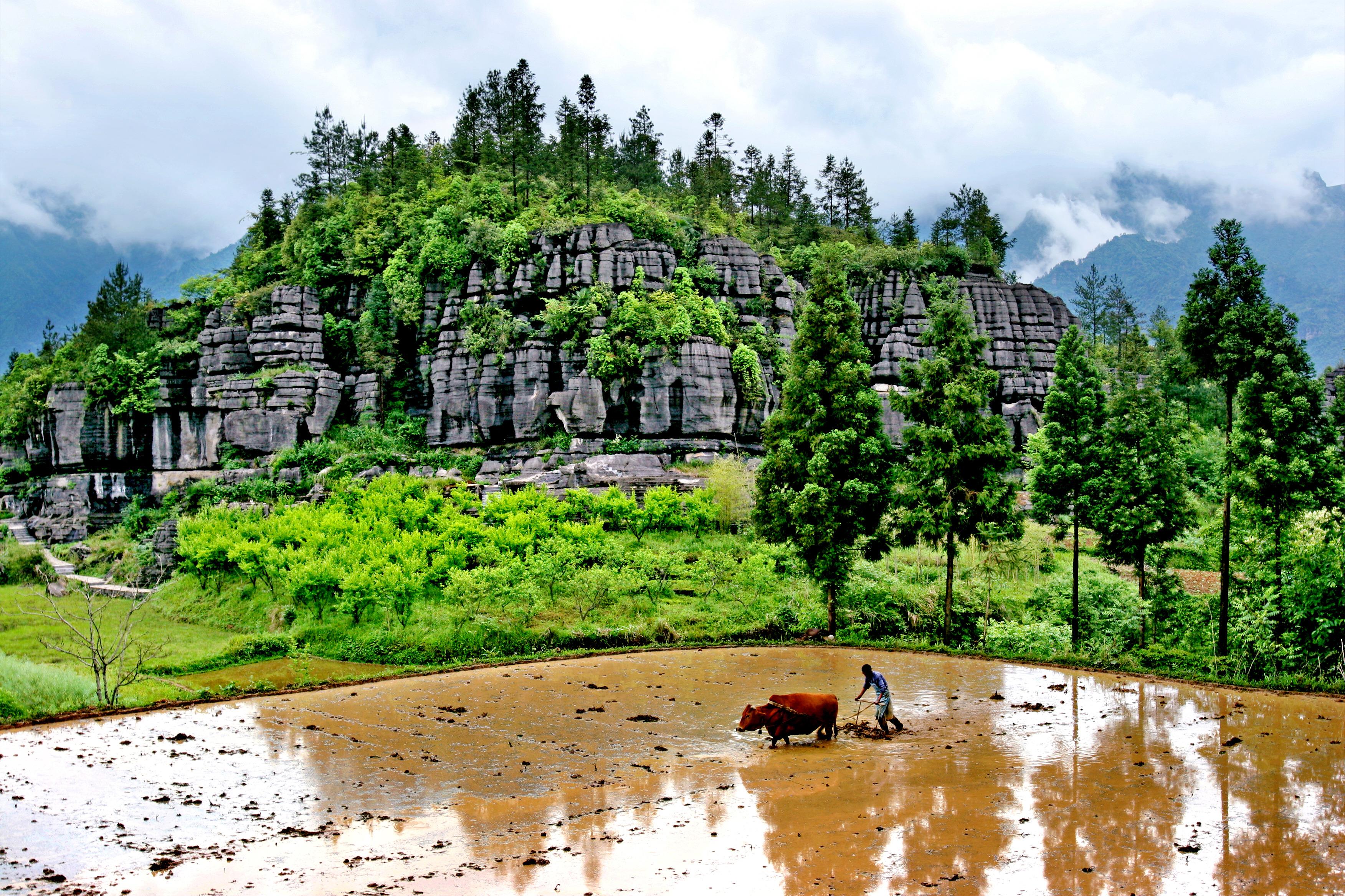 湖北地方资讯 > 正文   梭布垭风景区位于恩施市太阳河乡,距恩施市区5