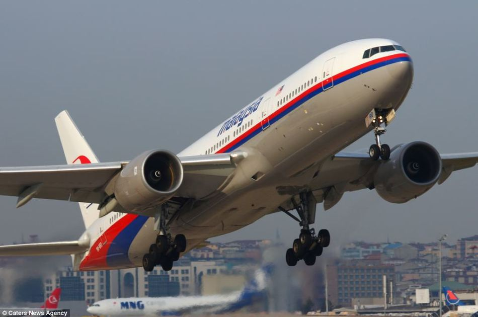 马航客机在乌克兰被击落现场(组图)