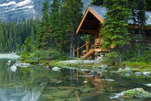 树林里的梦想小木屋(图)图片