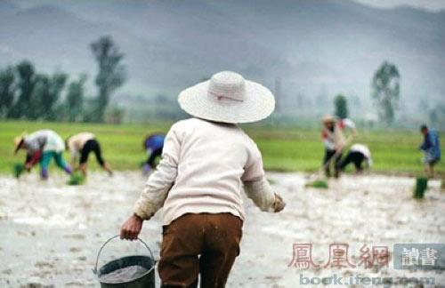 南塘村村民下地劳作-罗伯特议事规则背后的乡村现实