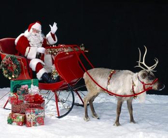 你要知道的圣诞文化