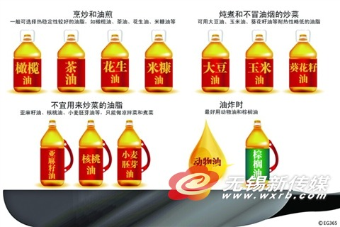 植物油动物油 哪种更安全?