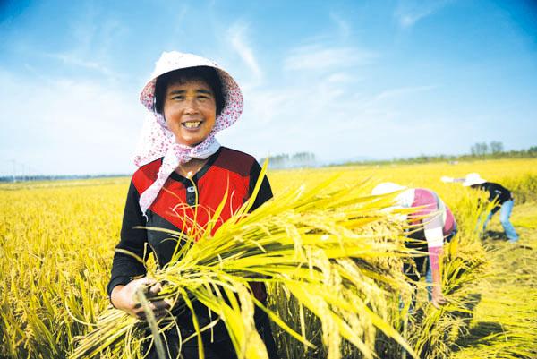 """10月16日是世界粮食日,""""发展可持续粮食系统,保障粮食安全和营养""""是图片"""