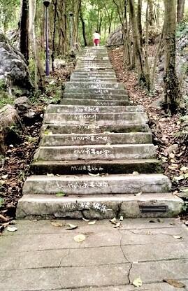 千级登山台阶写满告白语 霸气告白惊呆游客(图