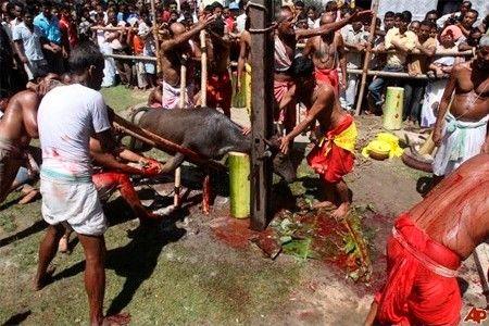 一女子祭拜时被斩首 头颅用于献祭