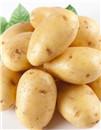 齐齐哈尔马铃薯产业全链条快发展