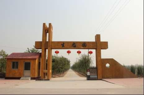陵县东方朔故里森林公园升级为省级森林公园