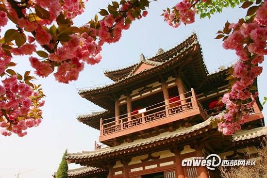 2012年陕西最美的十大赏花地