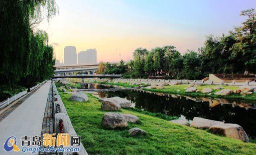 青岛海泊河整治新景观亮相 绿树拂水宛如江南