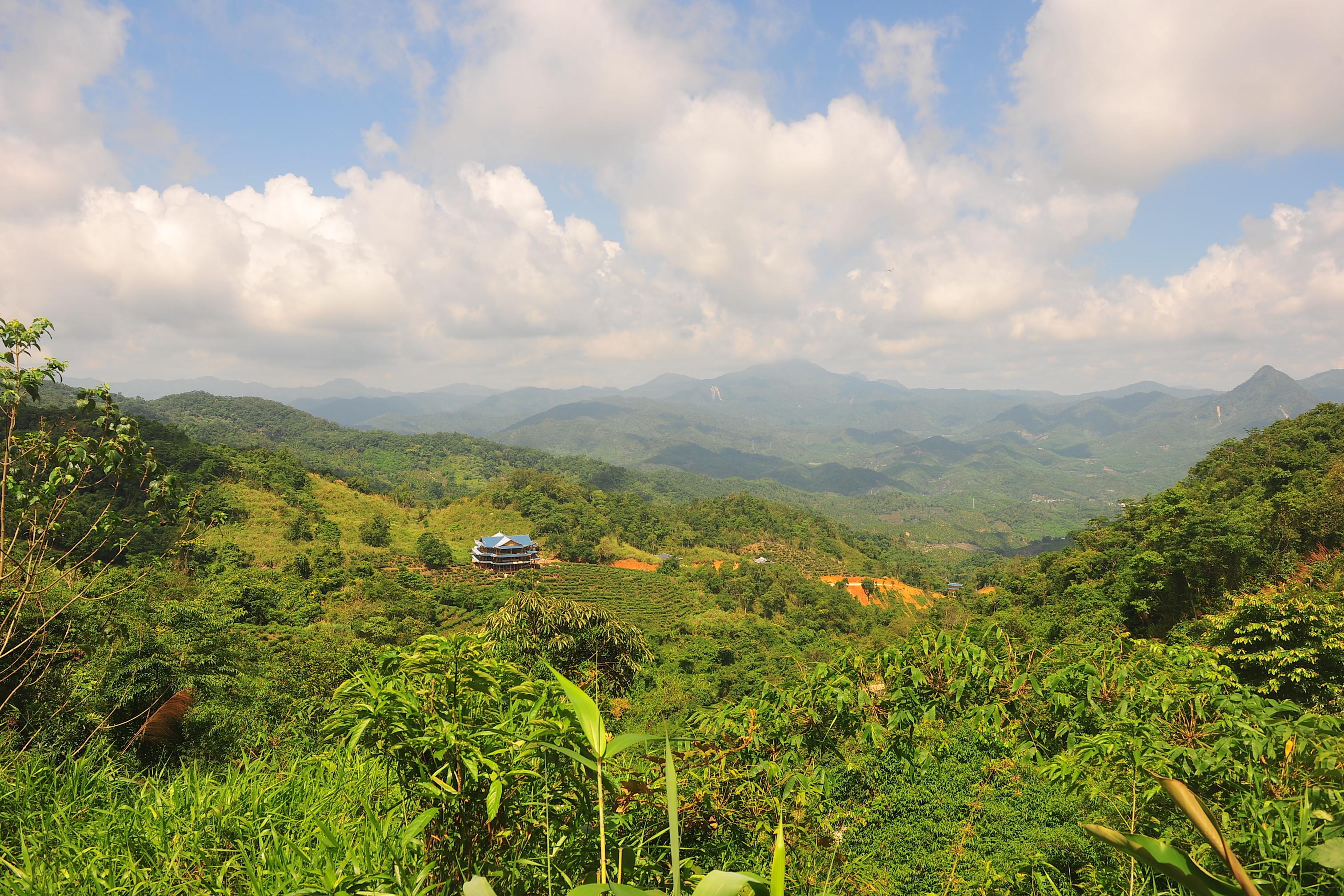 海南岛热带雨林_常青茶溪谷 北纬18°旅游度假养生胜地雏形初现_海南频道_凤凰网