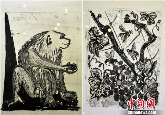 毕加索8件版画作品亮相新疆,其中5件作品都是动物题材,分别为:《公羊》、《猴子》、《螨蜂》、《牛》、《鹿》。图为《猴子》、《螨蜂》两件作品。 马新龙 摄 中新网乌鲁木齐11月23日电(马新龙)11月23日,由北京大学和新疆文化厅主办的《大师印记——赛克勒博物馆藏西洋版画展》在位于新疆乌鲁木齐的新疆博物馆开展,十位著名西方艺术大师的百余件(套)版画作品供市民免费欣赏,其中有8件是西班牙著名画家毕加索的作品。 据了解,毕加索的这8件版画都是其写实作品,包括了《螨蜂》《公羊》《鹿》《牛