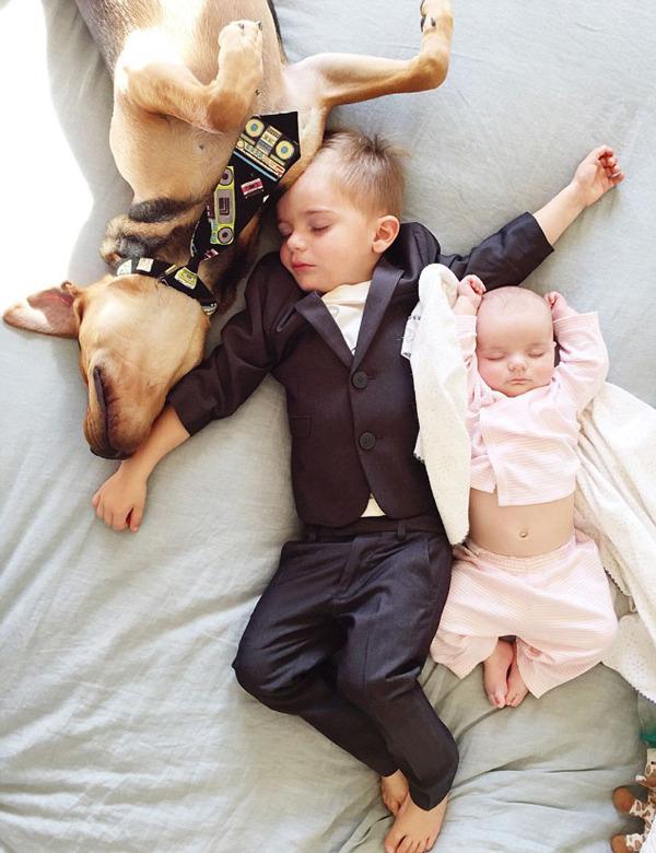 国际在线专稿:据英国《每日邮报》1月18日报道,去年,美国加利福尼亚州希巴家族的小狗西奥(Theo)与小主人博希巴(Beau Shyba)酣睡的照片曾打动全世界无数人的心。据报道,西奥是被希巴家族于2013年11月份收养的,不久后它开始与博午睡。