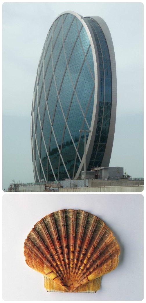 全球十大仿生建筑设计