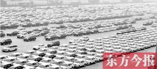 青岛港码头停放的进口汽车