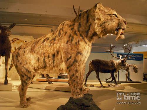 《冰河时代4》新角色登场 史前动物追根溯源