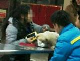女大学生用食堂公碗喂宠物狗 遭网友怒斥