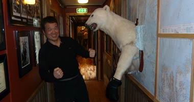 墙上的北极熊