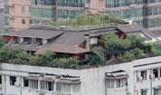 武汉居民买整个楼顶建空中花园
