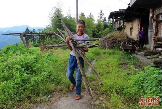 还要承担家务和下地劳作.13岁的他,经常要到山里砍柴做饭.-13