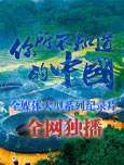 福建洛阳桥:牡蛎分泌粘液加固桥墩