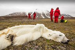 一组记录人类正在毁灭地球的照片