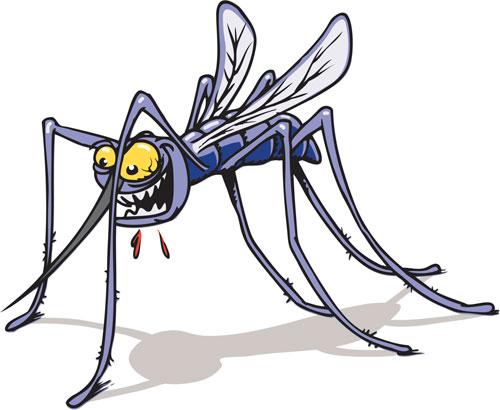 什么血型最招蚊子