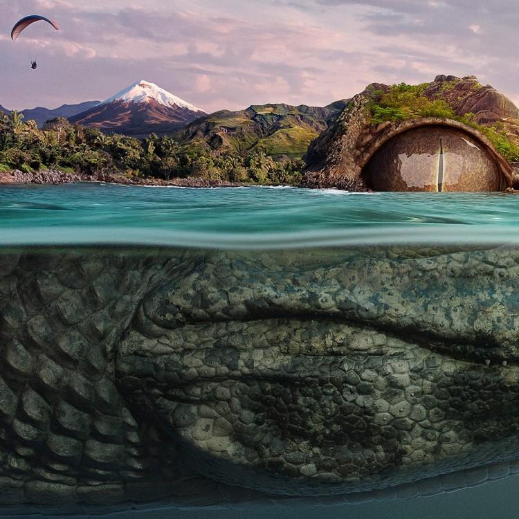 幻想的小岛下的世界