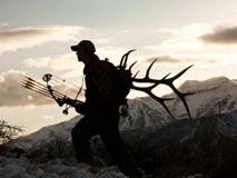 野鹿暴增 狩猎者重新出现