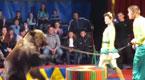 实拍马戏团巨熊失控袭击观众