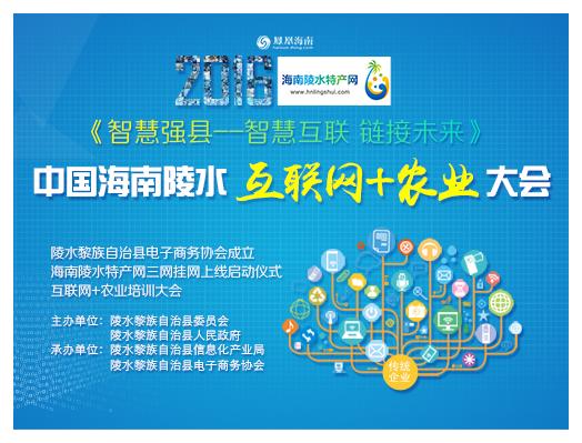 2016中国海南陵水互联网+农业大会