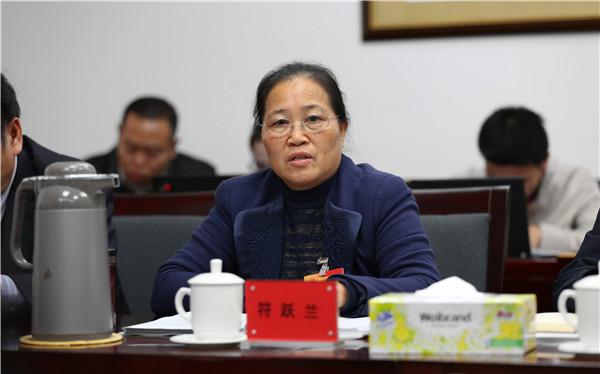 陵水团代表审议省政府工作报告|报告| 发展_凤