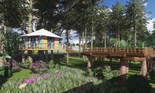 洛阳白云山林涧木屋度假酒店预计今年4月就要开门迎客