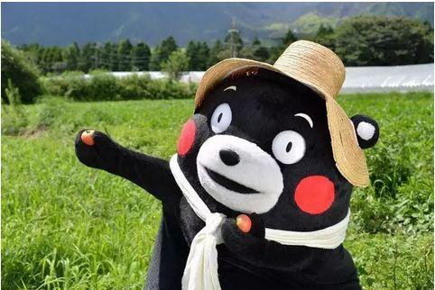 2011年9月30日开始熊本熊担任熊本县营业部部长(这是仅次于熊本县知事