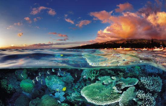 探秘海外仙岛留尼旺 发现马航坠机残骸之地