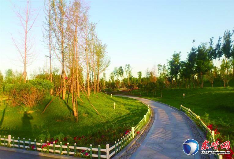 森林乐园:城中央的公园