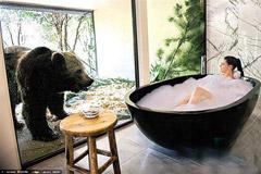 与猛兽同食共寝 澳动物园开旅馆