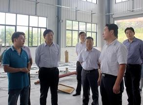 工信部党组成员金书波来高新区调研